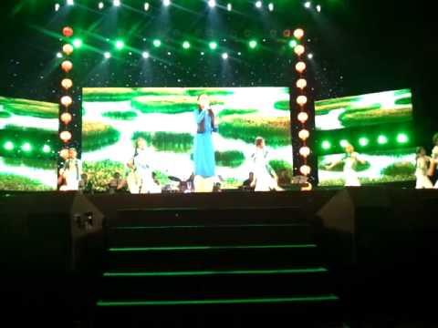 Áo cưới Cà Mau - Phương Mỹ Chi tại liveshow Xuân Trên Quê Hương 2014