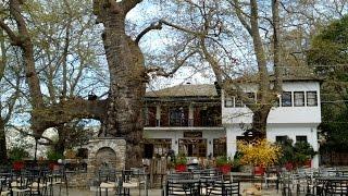 Portaria Greece  city photos gallery : Greece - Pelion (Portaria) / Πήλιο (Πορταριά)