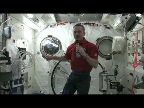space - Sometimes astronauts experience disorientation and nausea when they arrive in space. CSA Astronaut Chris Hadfield demonstrates how astronauts deal with space...