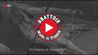 La vidéo choc de l'abattoir d'Alès qui fait scandale