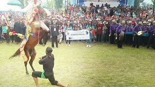 FESTIVAL KUDA RENGGONG Nov 2017 Part2 - unique traditional arts of horse renggong
