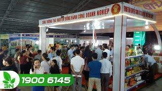 Nông nghiệp | Tưng bừng Hội chợ mỗi xã, phường một sản phẩm tại Thái Nguyên