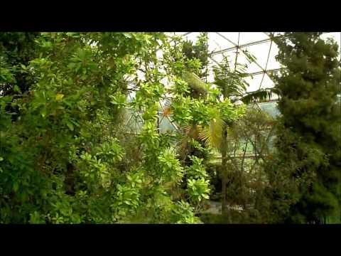 Botanische Gärten: Düsseldorf (NRW) - Kuppelgewächsha ...