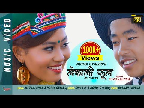 (New Selo Song LEKALI PHOOL by Jitu Lopchan & Ngima Gyalbo Tamang ft. Susma Moktan 4K VIDEO - Duration: 6 minutes.)