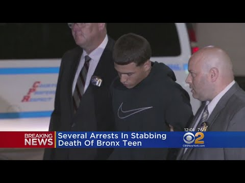 8 Arrested In Stabbing Death Of Bronx Teen