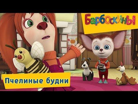 Барбоскины - Пчелиные будни. Сборник мультфильмов 2017 (видео)