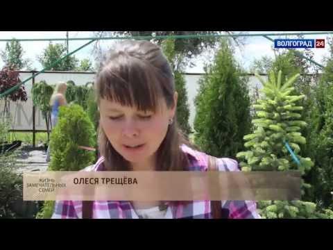 18 июня 2016. Семья Трещевых