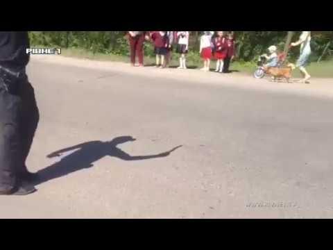Небезпечна дорога додому: що загрожує школярам на Рівненщині? [ВІДЕО]