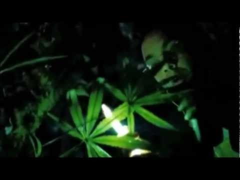 Friday The 13th - Weed Scene