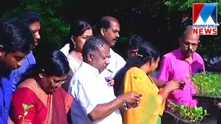 Minister K Raju's organic farming at home
