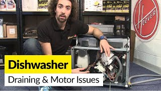 Video How to Diagnose Draining and Motor Problems in a Dishwasher MP3, 3GP, MP4, WEBM, AVI, FLV Agustus 2019