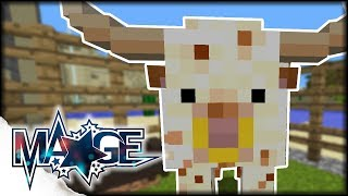 Das sind aber komische Tiere | Minecraft Mage 26