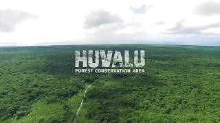 Take a glimpse into our Huvalu Forest Conservation Area. #NowhereLikeUs #Niue.