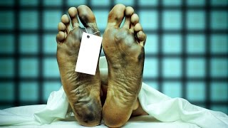 10 Things That Happen After You DIE