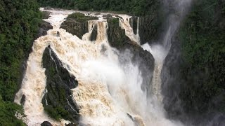 Daintree Australia  City new picture : Barron Falls and Daintree National Park - Queensland, Australia (in HD)