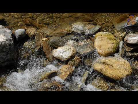 Yeshuven Pakshamay - Malayalam Christian Song