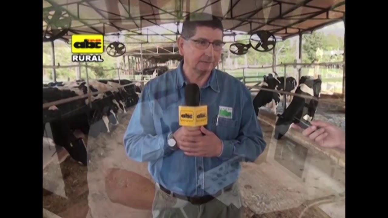 Manejo de vacas lecheras en recría y pre servicio