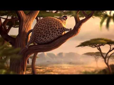 Rollin Safari
