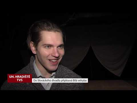 TVS: Deník TVS 10. 12. 2018