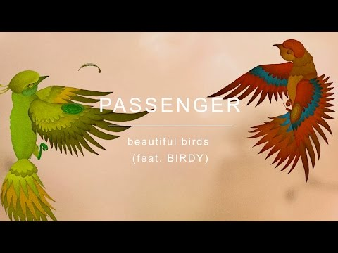 Passenger Ft. Birdy  - Beautiful Birds