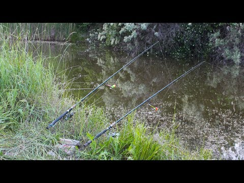 рыбалка на амуре летом 2016