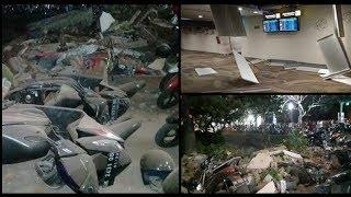 Video Inilah Bukti Gempa Lombok Telah Diperingatkan Sebelum Terjadinya MP3, 3GP, MP4, WEBM, AVI, FLV Agustus 2018