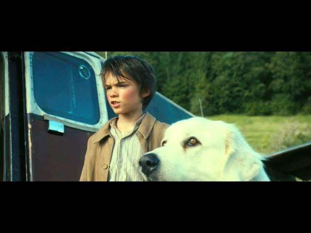 trailer Belle & Sebastian: The Adventure Continues