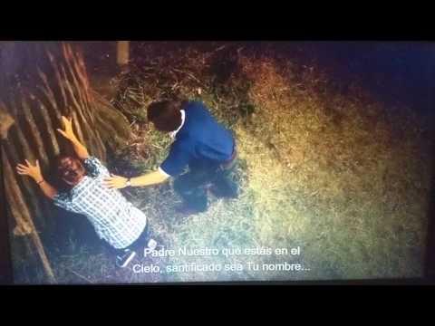 Milagros del cielo - Escena árbol - Miracles from heaven