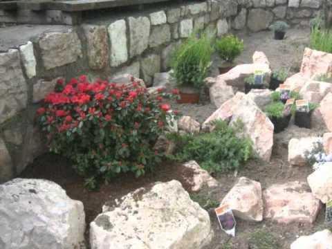 come creare un giardino roccioso - fai da te