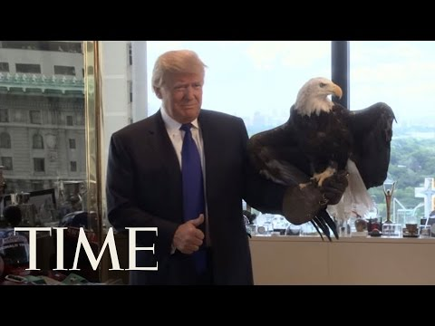 Watch Donald Trump Dodge a Bald Eagle | Person Of The Year 2015 | TIME