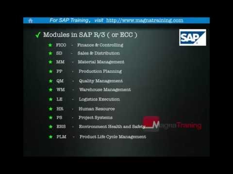 SAP - A brief introduction to SAP.