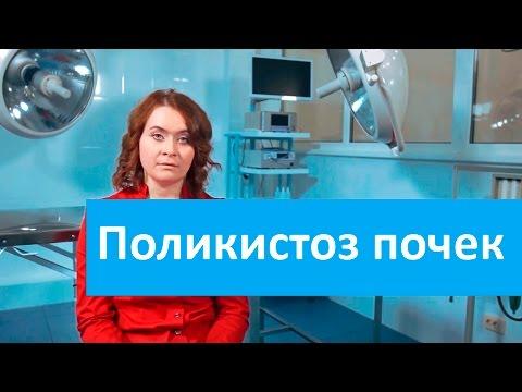 Поликистоз почек. Ветеринарная клиника Свой Докторо поликистозе почек