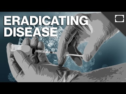 we - With advancements in technology and vaccines, you would think many diseases are on their way out for good...but they aren't. In fact, we haven't eradicated anything since smallpox in 1977....