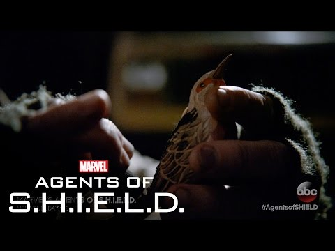 Marvel's Agents of S.H.I.E.L.D. 3.15 (Clip 2)