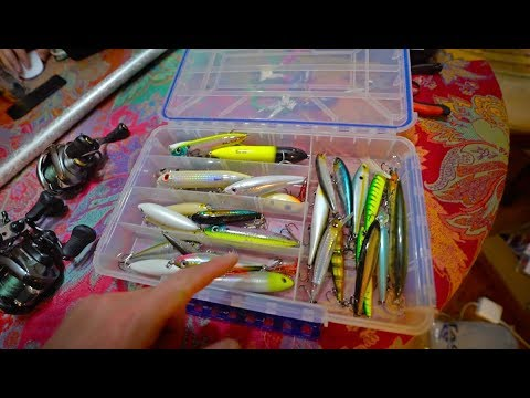 GIANT Lure Unboxing For The Rainforest Fishing Mission