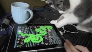 IPad Animal Fun