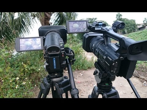 Sony HXR-NX100 vs Sony HDR-CX900 ( XAVC S 50Mb, Full Auto )