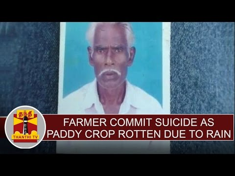 Farmer-commit-suicide-as-paddy-crop-rotten-at-Mayiladuthurai-Thanthi-TV