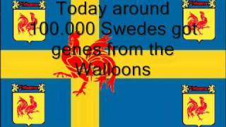 """A short film about how some swedes actually can call them for Walloons aswell. If you think """"400 years ago, the Walloon genes..."""