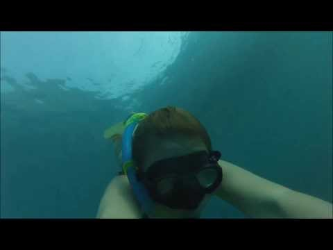 freediving tailand