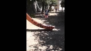 Video Per Paperissima