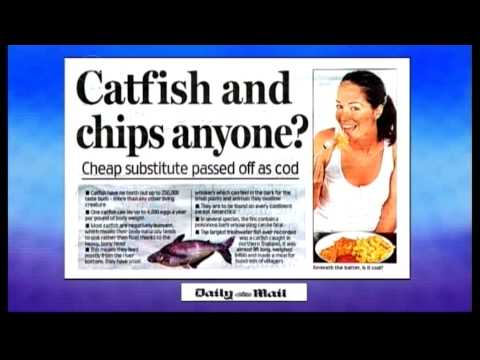 Dick Strawbridge and the papers (13.07.09) - TWStuff