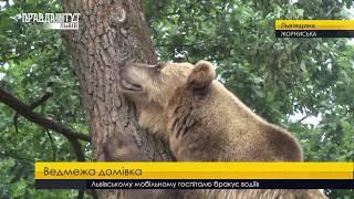 Випуск новин на ПравдаТУТ Львів 11.07.2018