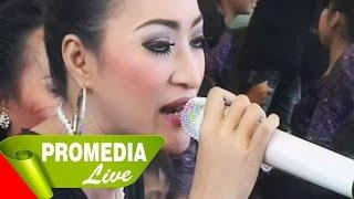 Video Pengantin Baru - Dewi Kirana 23-8-2014 MP3, 3GP, MP4, WEBM, AVI, FLV Januari 2018