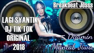 Video Lagi Syantik Dj Tik Tok Original 2018 MP3, 3GP, MP4, WEBM, AVI, FLV Agustus 2018