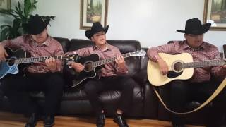 Los Plebes Del Rancho - Será que estoy enamorado (Los Alvarados Junior)