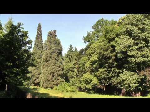 Naučná stezka Kunratický les