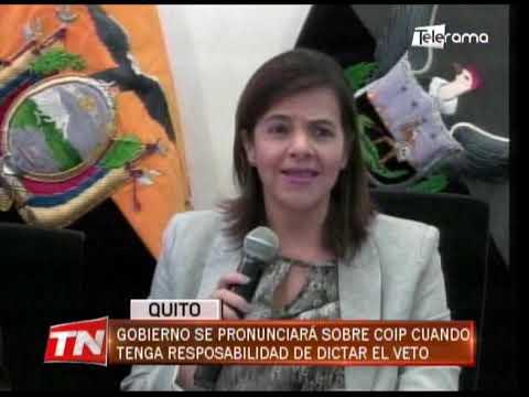 Gobierno se pronunciará sobre COIP cuando tenga responsabilidad de dictar el veto