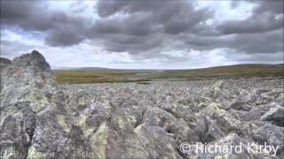 Classic Falklands