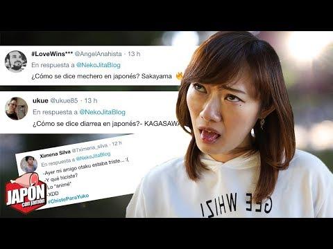 Japonesa reacciona a CHISTES SOBRE JAPONESES  Humor japonés